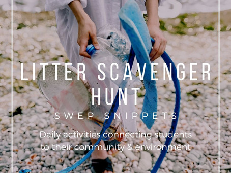 Litter Scavenger Hunt