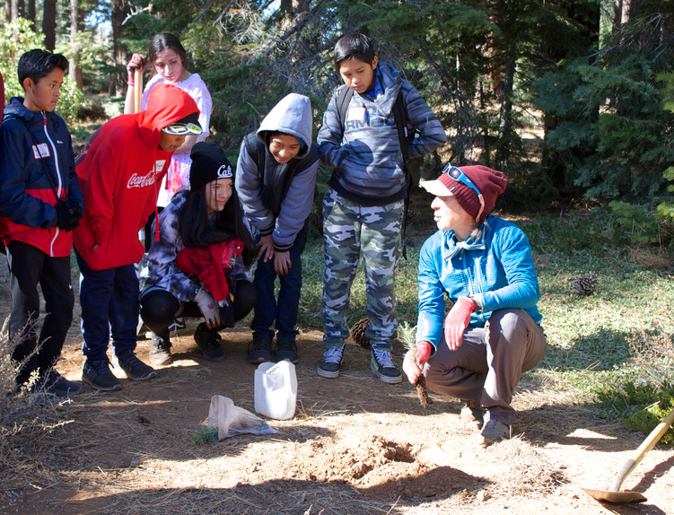 Forest Health Field Day