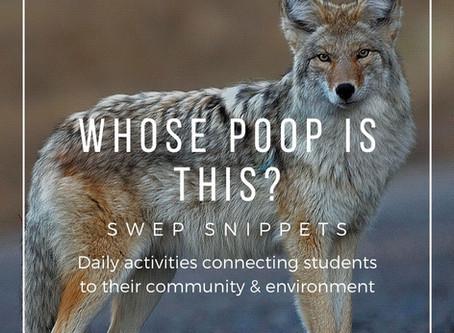 Whose Poop is This?