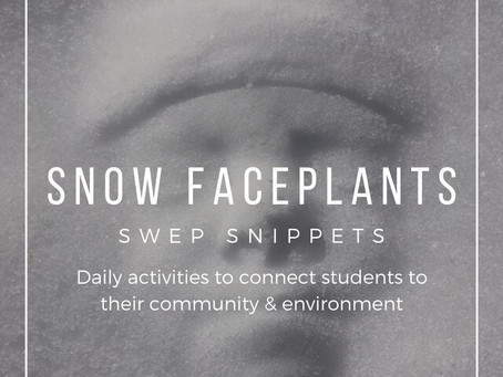 Snow Faceplants