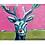 Thumbnail: Ruby