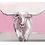 Thumbnail: Longhorn acrylic blocks
