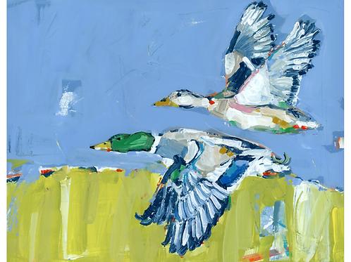 """Duck Krausing"" on paper"