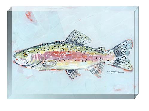 Rainbow Trout acrylic block