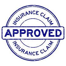 Apple Insurance Claim Report