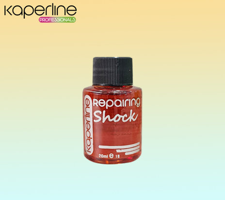 Oleo Repairing Shock