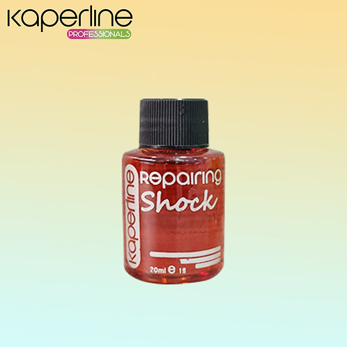 Oleo ( Repairing Shock )