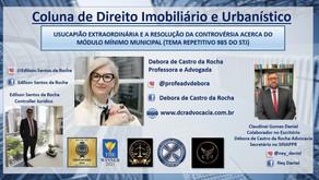 USUCAPIÃO EXTRAORDINÁRIA E A RESOLUÇÃO DA CONTROVÉRSIA ACERCA DO MÓDULO MÍNIMO MUNICIPAL 985 STJ