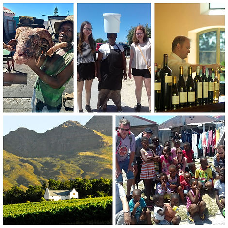 Township and Wineland Tour