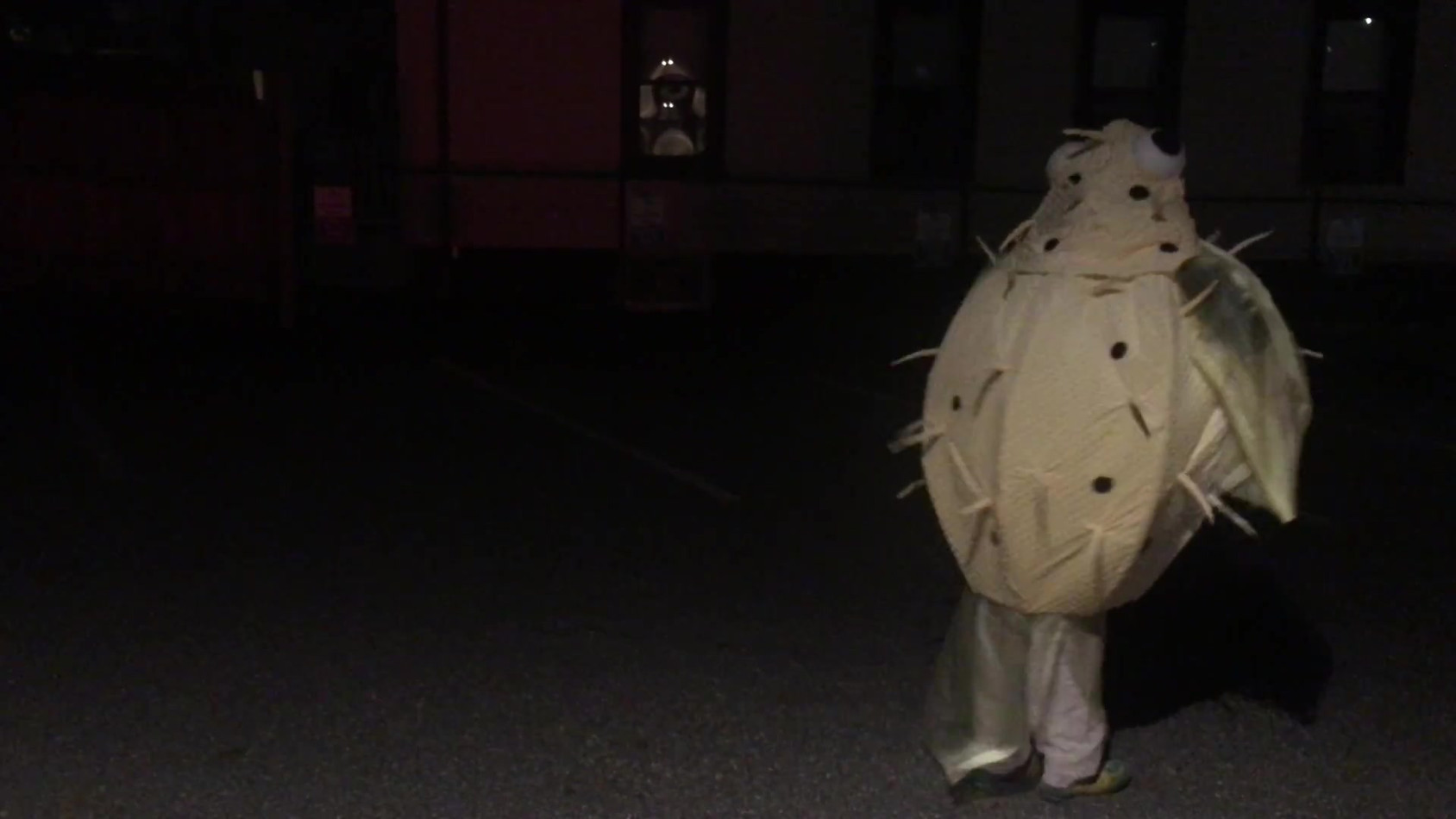 Don't startle a backalley blowfish!