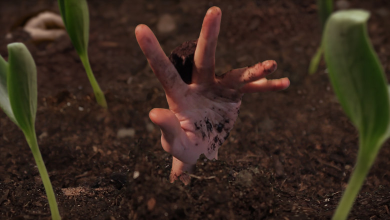 18_Hand sprouting.jpg