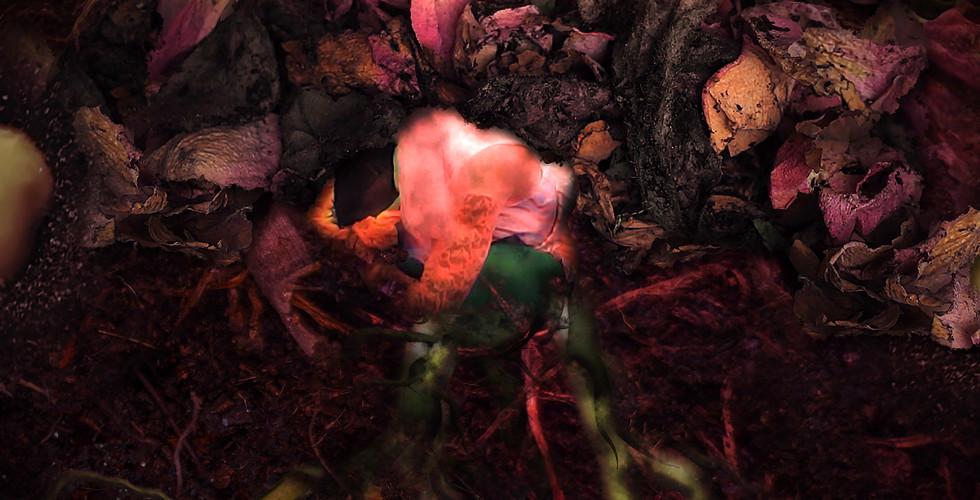 65_Akil seed_edited.jpg