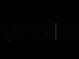 Undiz-logo (1).png