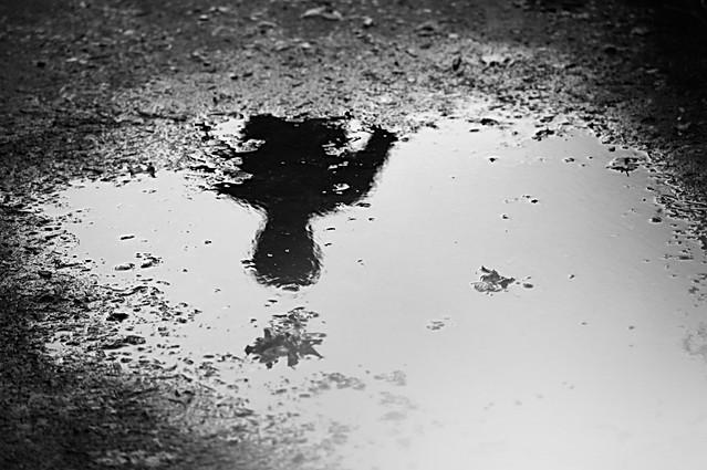 Mud Mirror