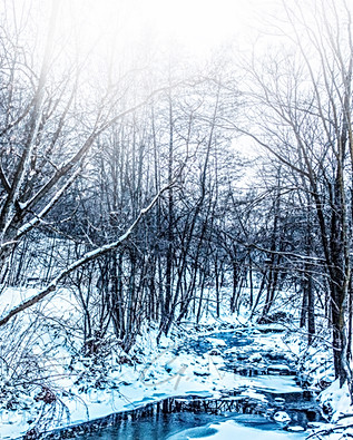 Winter Mysteries II