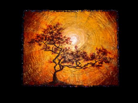 Arbol de la Esperanza | Tree of Hope