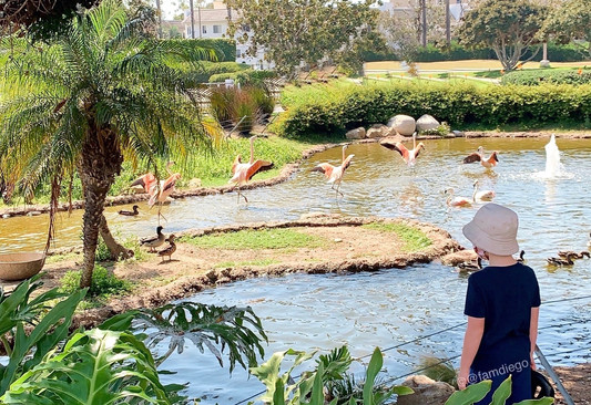 Shhh...FREE Secret Zoos in San Diego
