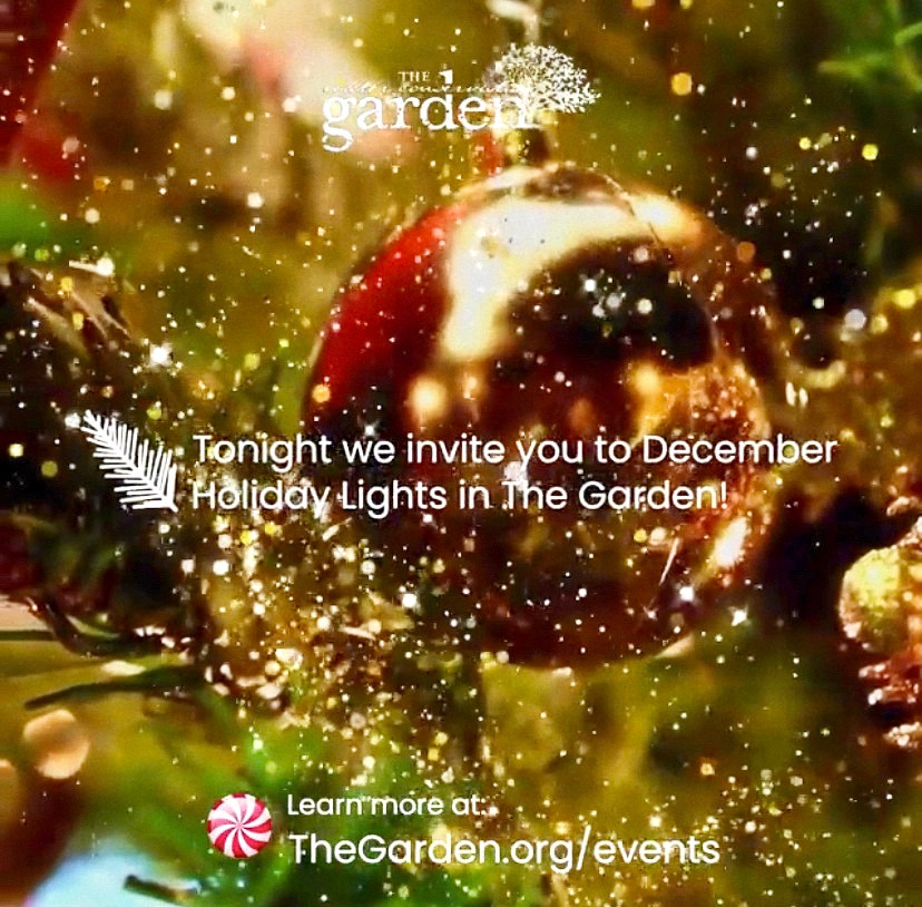 Water Conservation Garden El Cajon Garden Nights Holiday Lights Best Top Holiday Christmas events activities list guide for families kids are still happening in San Diego December 2020 what to do this year