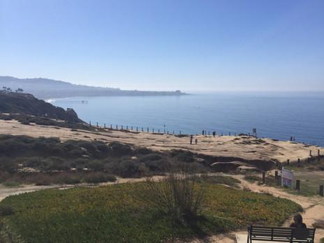 Top 5 Favorite Local Kid-Friendly Spots in Carmel Valley