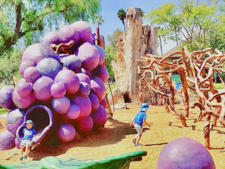 Crush It At This Playground: Grape Day Park - Escondido