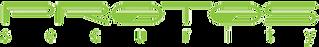 protos_security_logo.png