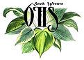 SWOHS logo.jpg