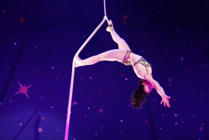 Paulo's Circus
