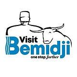 Visit Bemidji 2020 Logo.jpg