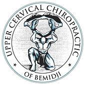 Upper Cervical Chiropractic Bemidji Logo