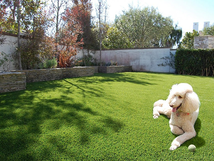 Appease Builders, Synthetic pet turf