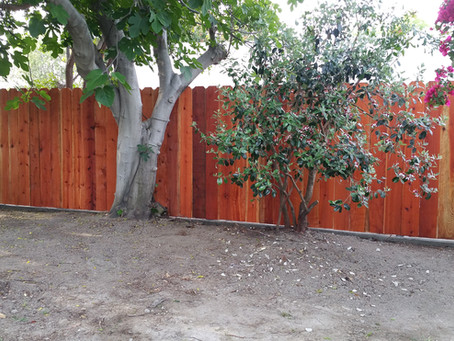 Redwood fence with a concrete footing