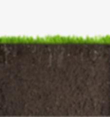 Dirt and grass.jpg