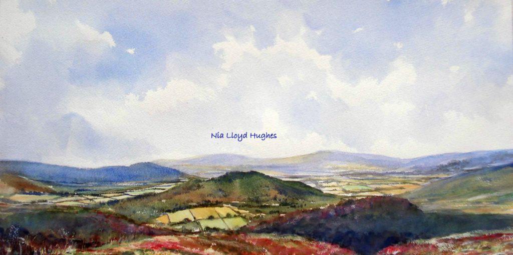 Clwydian Hills 1