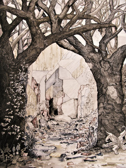 Cilgerran Quarry