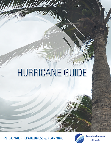 Hurricane Guide _FIOF.PNG