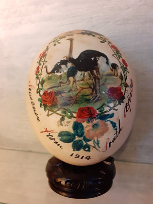 Antique Ostrich Egg from South Africa 1914