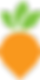 carrot-colour-100px (1).png