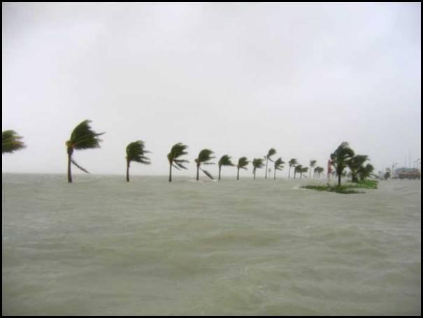 Wilma Key West Roosevelt Blvd 10-24-2005.jpg
