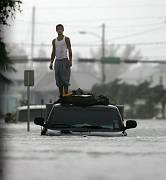 Wilma Key West Man on roof of car.jpg