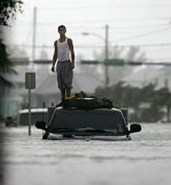 Wilma Key West Man on roof of car.jpg