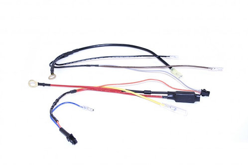 12.5 Eco/Racing Negative Wiring Loom. ELE101339