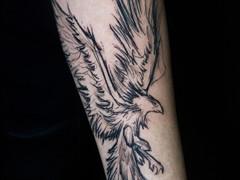 Sketchy Phoenix