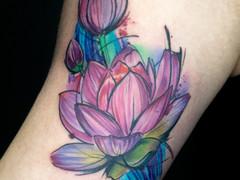 Lotus California