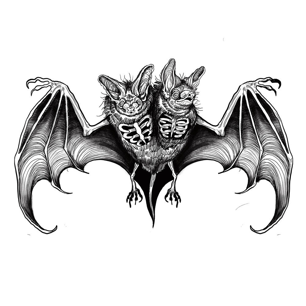 Siamese bat