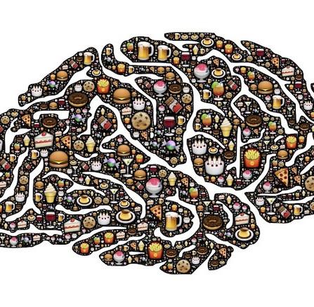 Neuroni POMC: alleati della sazietà?