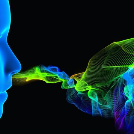 SmellTracker: la piattaforma online che permette di monitorare l'olfatto con un click