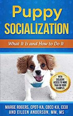 puppy socialization.jpg