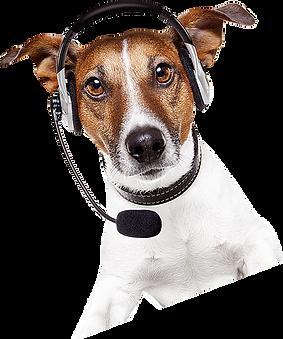 computer dog-operator.png