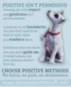 Positive doesn't mean permissive.