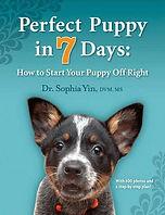 perfect puppy in 7 days Yin.jpg